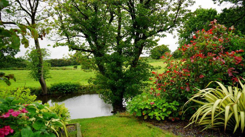 Ogród idealnie zaprojektowany